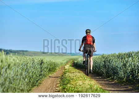 Rear view of the young cyclist with backpack cycling in the track of the field. Sportsman dressed in the black sportwear and sportive shoes, with helmet. Beautiful landscape and horizontal photo. Concept of the healthy and active lifestyle.
