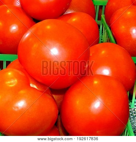 Red tomatoes in Markham Canada June 24 2017