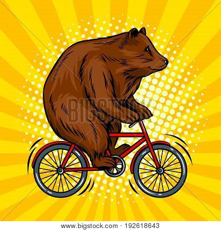Circus bear on bicycle pop art retro vector illustration. Comic book style imitation.