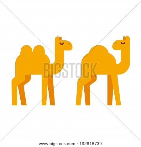 Simple cartoon camel illustration in flat geometric style. One humped dromedary and two-humped camel. Vector clip art.