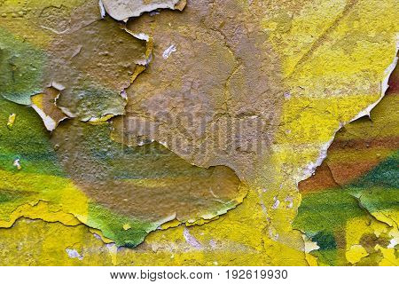 The texture of the yellow paint on the wall, which from time to time has cracked and peeled off, has become a beautiful background and abstraction.
