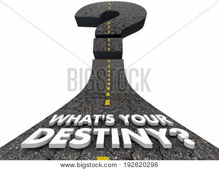 Whats Your Destiny Road Forward Fate Destination 3d Illustration