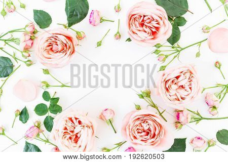 Frame made of pink roses and buds on white background. Flat lay, top view
