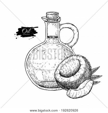 Bottle of coconut oil. Vector Hand drawn illustration. Cooking and beauty ingredient. Glass pitcher vintage engraving isolated on white background. Great for menu, banner, label, logo, flyer