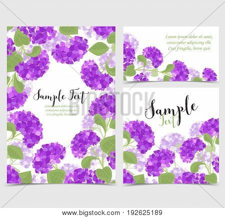 Set vector illustration of hydrangea flower Background with purple flowers. Cards invitations