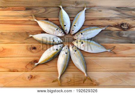 Fresh Yellow Stripe Trevally Fish