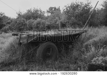 Old Russian Carriage Against The Background Of Green Grass. Cart. Dray.