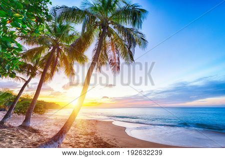 Sunset over Pearl beach (Plage de la Perle) beach near Deshaies, Guadeloupe, Caribbean