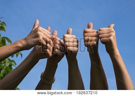 Thumbs up friends raise their hands and show their thumbs as a positive gesture on a sunny day against the blue sky with copy space