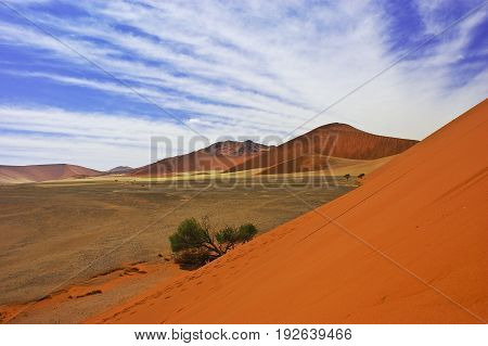 View from the middle of the dune 45 Namib Desert Namibia
