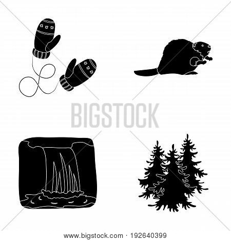 Canadian fir, beaver and other symbols of Canada.Canada set collection icons in black style vector symbol stock illustration .