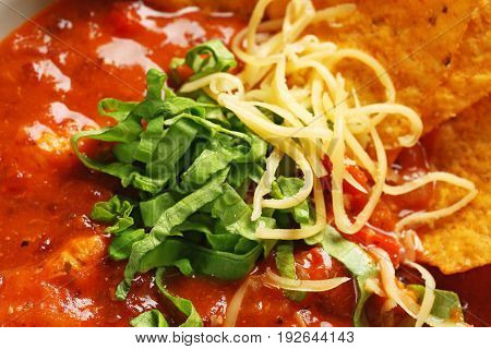 Delicious chili turkey with herbs, grated cheese and nachos, closeup