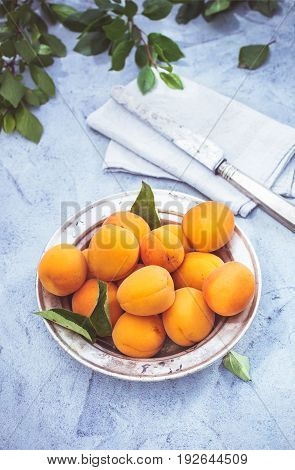 Fresh apricots in a metal plate on plastered surface, toned