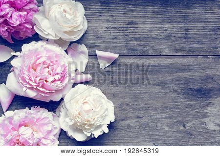 Wedding invitation or anniversary greeting card mockup decorated with pink and creamy peonies flowers on rustic wooden table with blank space for text. top view. flat lay