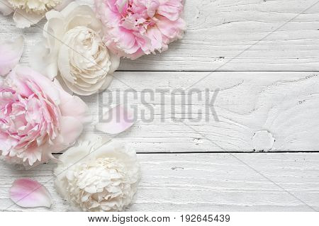 Wedding invitation or anniversary greeting card or Mother's Day card mockup decorated with pink and creamy peonies flowers on white wooden table with blank space for text. top view. flat lay