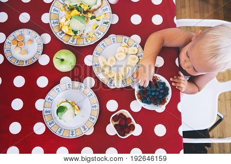 Family Having Breakfast. Little boy sitting at the table eating breakfast. Choice for child for eat: fruits berries sandwich cookies - finger food.