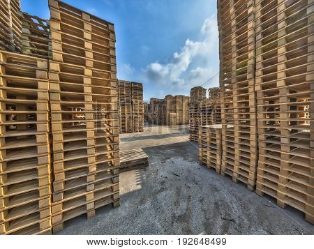 Business Area With Huge Piles Of Euro Cargo Pallets