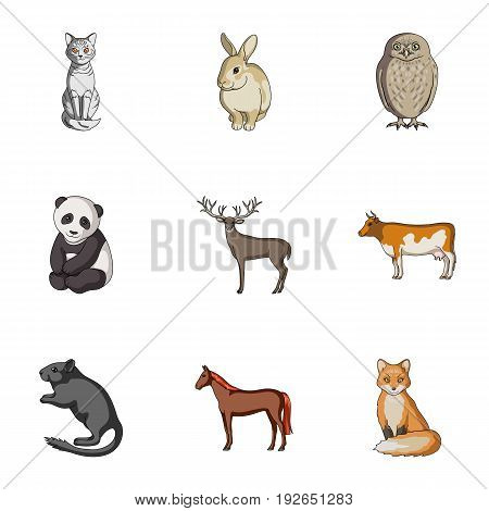 Deer, tiger, cow, cat, rooster, owl and other animal species.Animals set collection icons in cartoon style vector symbol stock illustration .