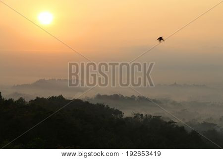 Sunrise view of Borobudur temple in the background. Misty rainforest in Java Indonesia Southeast Asia.