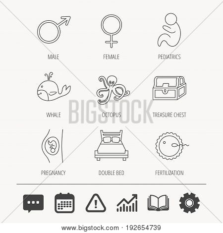 Fertilization, pregnancy and pediatrics icons. Baby child, whale and octopus linear signs. Treasure chest, double bed icons. Education book, Graph chart and Chat signs. Vector