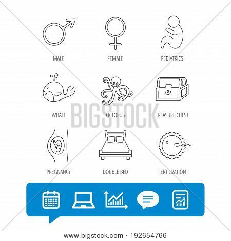 Fertilization, pregnancy and pediatrics icons. Baby child, whale and octopus linear signs. Treasure chest, double bed icons. Report file, Graph chart and Chat speech bubble signs. Vector
