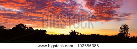 Panoramasunset beautiful colorful landscape and silhouette tree mountain in sky twilight time