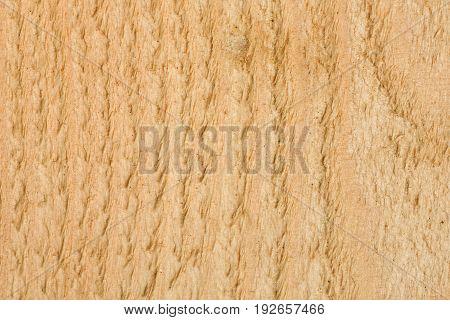 Cut Pine Boards Closeup, Vertical Option. Detailed Item