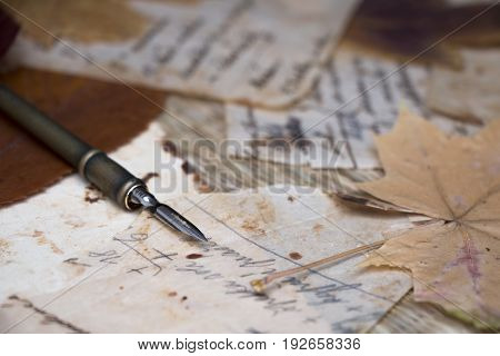 Still life. View of old handwritten notes on stained papers closeup. Dried leaves. Quill.