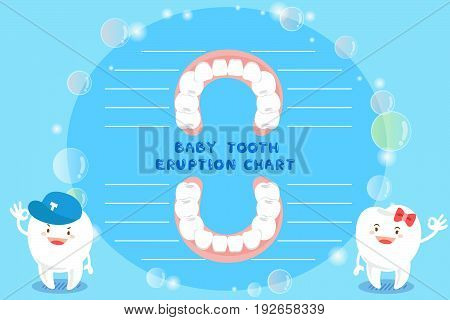 cute cartoon healthy baby tooth eruption chart