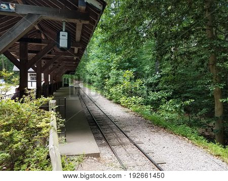 train tracks curving in the forest with trees