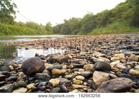 beautiful green forest and River stream with flowing water colorful stones in rainy season