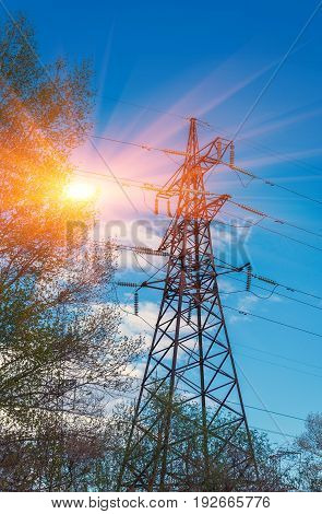 High-voltage lines against the blue sky green forest at sunset. electricity