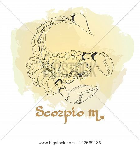 Hand drawn line art of decorative zodiac sign Scorpio on white background. Horoscope vintage card in doodle style with handwritten word.