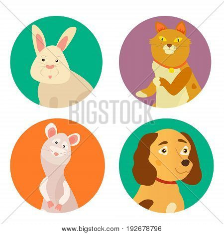 Bright images of domestic animals cat, rabbit, dog and rat. Can be used for pet shops, clinics or pet food advertising.