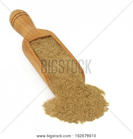 Fo ti tieng powder herb in a wooden scoop. Used in chinese herbal medicine as an aphrodisiac, has anti ageing rejuvenating properties and reverses gray hair. Pflanze. Polygonum multiflorum.
