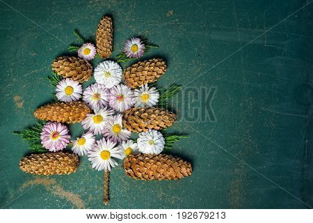 christmass tree made frome pine cones and branches with daisy flowers as a christmas decorations on the blackboard with copy space for your chalk text at the side. new year christmass concept.