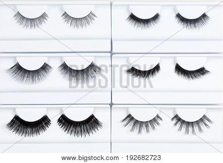 Set of Artificial Eyelashes in White Holder.