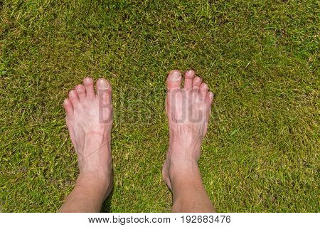 Mature man's feets standing on cut lawn. Shoot from above.