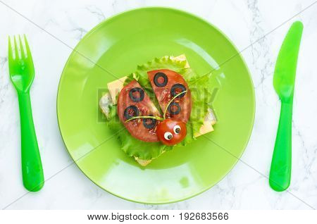 Ladybug sandwich on a green plate top view