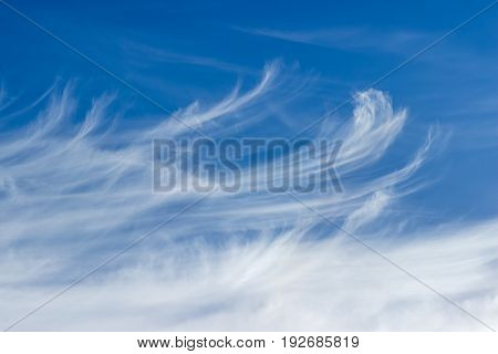 Background of a fragment of the sky with cirrus clouds in summer day