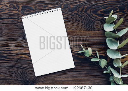 flat lay eucalyptus branches and a diary on a wooden background, top view. mock up