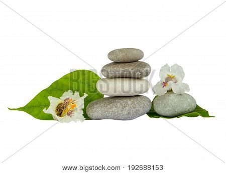 Sea stones with leaf isolated on white background. Concept of harmony and tranquility.