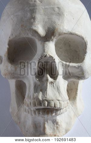 White Plaster Statue Of Human Head Skull On Blue Grey Background, Close Up
