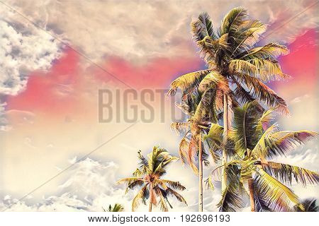 Coco palm tree with green leaves on pink sky. Tropical island vacation romantic digital illustration. Exotic holiday travel banner with text place. Tropical lifestyle background. Summer holiday poster