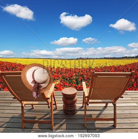 Pair of comfortable sun loungers next to flower field. Elegant women's straw hat hanging on a deck chair. The concept of recreation and eco-tourism