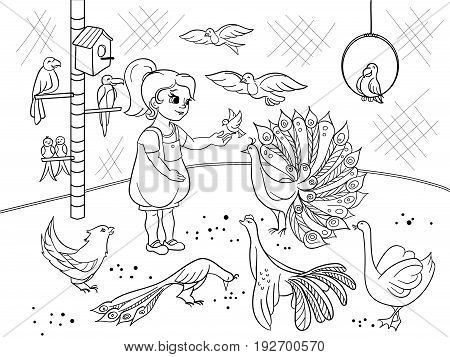 Childrens cartoon coloring the contact birds zoo. Bird black and white picture book. Ornithology for the girl. Vector illustration