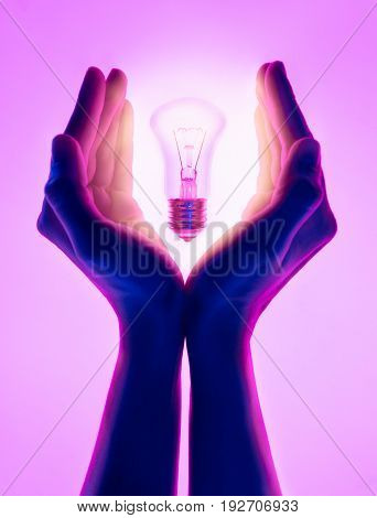 Female hands and holding luminous light bulb. Electric incandescent light bulb in hand on purple background. Inspiration Ideas concept.