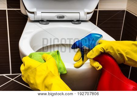 Woman Is Cleaning Toilet Bowl With A Rag And Disinfectant