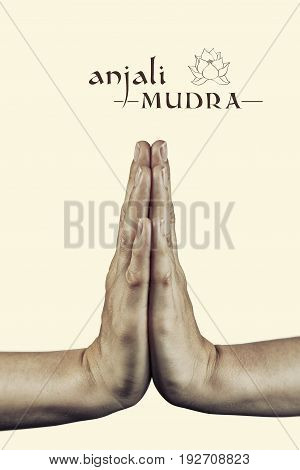 Anjali mudra. Yogic hand gesture. Isolated on toned background.