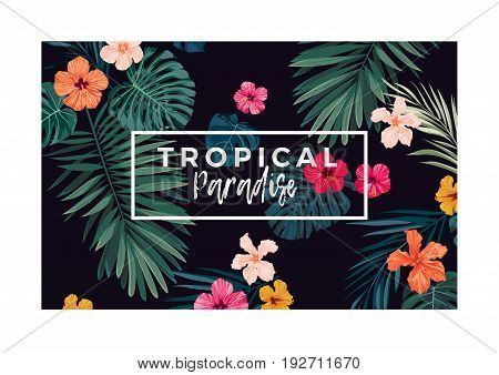 Tropical postcard design with bright hibiscus flowers and exotic palm leaves on dark background.. Vector illustration.